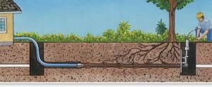 Montgomery Plumber: Cole Plumbing, Inc. Sewer Line Repair
