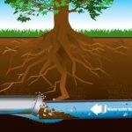 Sewer Pipes & Repair Sewer